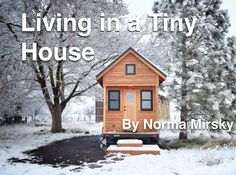 While the tiny house has become a big trend, there are some things you need to know before you shack up in one #realestate