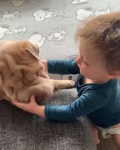 Kisses for my sweatheart- Cute dog- shar pei puppy - Welpen Shar Pei Puppies, Cute Puppies, Cute Dogs, Cute Babies, Cute Funny Animals, Cute Baby Animals, Funny Dogs, Animals And Pets, Unicorn Stuffed Animal