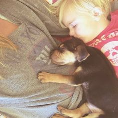 Nature Knows: Toddler Naps With His 2-Month-old Puppy Every Day [13 pictures]