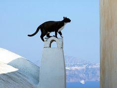 Seeing Santorini.