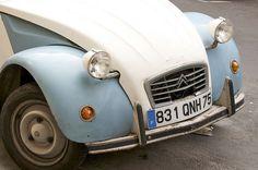 Paris, light blue, cream, gray: office color scheme?