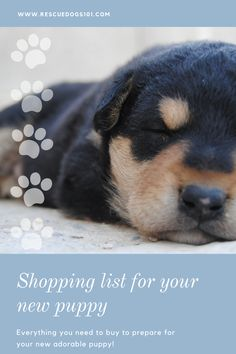 Got a new puppy? Get the New Puppy Shopping List. Rescue Puppies, Toy Puppies, Cute Puppies, Dogs And Puppies, Dogs 101, Puppy Potty Training Tips, Training Your Dog, Puppy Food, Dog Food