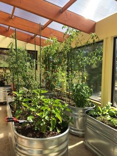 3 Ways to Heat Your Greenhouse for Free this Winter                                                                                                                                                                                 More #conservatorygreenhouse