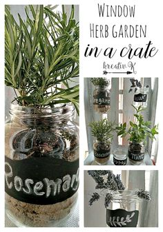 Window herb garden in a crate kreativk