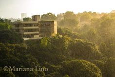 Nature gives us everything: #inspiration #landscapephotography #photography #landscapes #rainyday