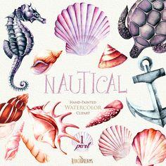 Nautische Aquarell Clipart. Muscheln Seepferdchen