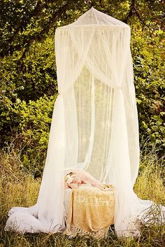 love that, can make that for cheap with second hand fabric, and a wine barrel ring, or a whoola hoop... Outdoor Newborn Photography, Toddler Photography, Image Photography, Photography Props, Family Photography, Photography Settings, Baby Poses, Newborn Poses, Newborn Shoot