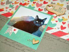Elle's Studio Love You More Collection- Nani Ke Ola Project