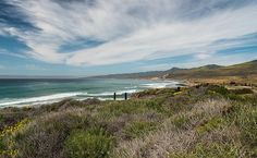 Jalama Flora and Fauna - Santa Barbara News - Edhat