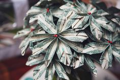 Money blossoms neat gift for a wedding, graduation, bridal/baby shower...  {Mirus Polleo Pho}