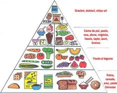 """Read """"Food Pyramid And Nutrition Guide (Speedy Study Guide)"""" by Speedy Publishing available from Rakuten Kobo. A Food guide and nutrition guide can help you to eat healthy because they are a mental reminder of what foods you need t. Tips And Tricks, Food Pyramid Kids, Diabetic Recipes, Healthy Recipes, Healthy Foods, Healthy Habits, Eating Healthy, Healthy Tips, Captain Morgan"""