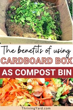 As a beginner you may be wondering why it's a good idea to compost in a cardboard box? A cardboard box makes an excellent compost bin. While not really suitable for indoor composting, using a cardboard box to begin composting outdoors allows you to keep the pile contained. It is free, easy, quick and biodegradable. Learn more here. #composting #howtocompost #whattocompost #compost #compostbin Build Compost Bin, Making A Compost Bin, Composting Methods, Worm Composting, Compost Tumbler, Used Cardboard Boxes, Soil Improvement, Starting A Garden, Lawn Care