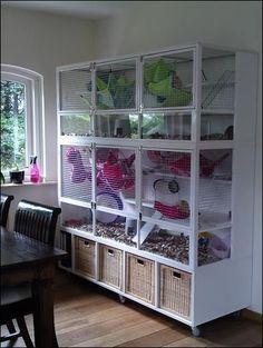 Image result for ikea cube bookshelf rat cage