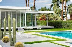 Palm Springs Style   The Family Love Tree
