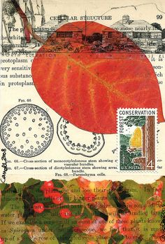 handmade postcard collage by dumpsterdiversanonymous on flickr www.flickr.com/ph... #paper_crafting #mail_art #collage