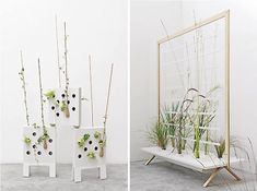 Indoor Plants Keep Purify Air in Living Spaces - Vertical Home Garden