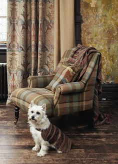 Tartan Chair - In Scottish Interior Life, journalist Heather MacLeod looks at interiors in Scotland. Tartan Fabric, Tartan Plaid, Tartan Decor, Scottish Decor, Style Anglais, Motif Art Deco, English Interior, English Decor, Scottish Fashion