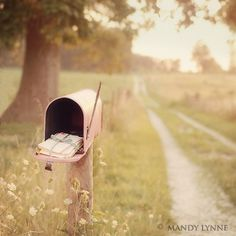 so quaint, ideal :: one day i'll live up a little lane with a pink mailbox.  ((think nate will let me have a pink mailbox??))