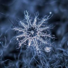 These Macro Photos Of Snowflakes Are Totally Breathtaking. With his stunning close-up photos of snow in Moscow, Russia, Alexey Kljatov proves nature is the world's most spectacular artist. Snowflake Photography, Photo Macro, Snowflake Photos, Real Snowflakes, Simple Snowflake, Crystal Snowflakes, Ephemeral Art, Fotografia Macro, Ice Crystals