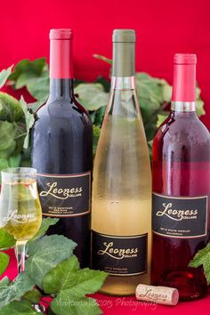 #wine #selection #2013 #cheers