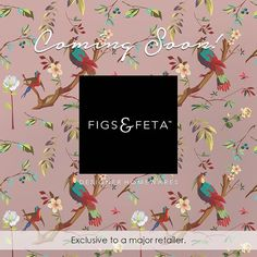 Figs & Feta introduces you to a world where interiors are filled with colour, texture and design.