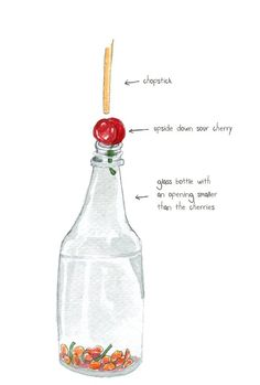 #16. The easiest way to pit a cherry! ~ 36 Kitchen Tips and Tricks That Nobody Told You About