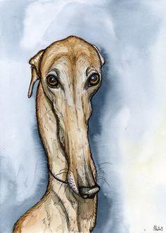 A Little Presumption  Greyhound Art Dog Print by AlmostAnAngel66, £75.00