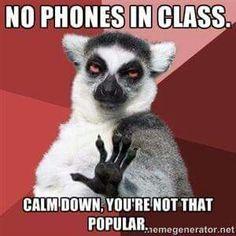 Cell phone meme