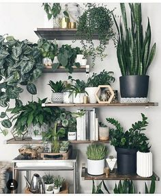 4 Ultimate Tips AND Tricks: Natural Home Decor Living Room Floors natural home decor feng shui living rooms.Simple Natural Home Decor Wall Colors natural home decor ideas feng shui.Natural Home Decor Ideas Feng Shui. Decoration Bedroom, Decor Room, Wall Decor, Diy Wall, Build Your House, Decoration Plante, Deco Floral, Feng Shui, Room Inspiration