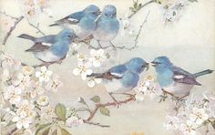 five blue birds on blossom tree, three above, two below