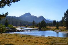 Yosemite National Park Tioga Pass: The Road Less Traveled