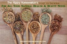 Top 15 herbs for your natural health and beauty needs.