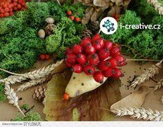 Podzimní tvoření   i-creative.cz - Kreativní online mag… na Stylowi.pl