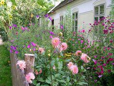 Wer einen Bauerngarten anlegt, holt sich Vitalität und Lebensfreude ins Haus.