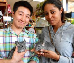 Are pet chinchilla owners the happiest pet owners of all?