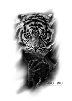 Tiger and spartan tattoo idea. Visit www.lukatattoo.ro for more!