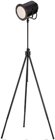 The Directeur Floor Lamp from Urban Barn is a unique home decor item. Urban Barn carries a variety of Floor Lamps and other  products furnishings.