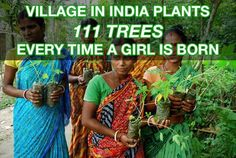 """""""While in some parts of India, many expectant parents still say they'd prefer bearing sons, members of the Piplantri village, in the eastern state of Rajasthan, are breaking this trend by celebrating the birth of each baby girl in way that benefits everyone. For every female child that's born, the community gathers to plant 111 fruit trees in her honor in the village common."""""""