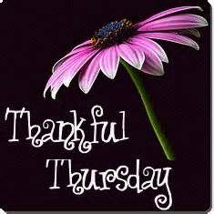 Thankful Thursday #5