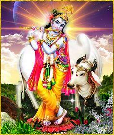 Krishna With Cow Wallpaper Lord Krishna Best Games Wallpapers
