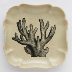 UNDER THE SEA CORAL WALL PLATE Square Decorative Wall Plate with Coral Image
