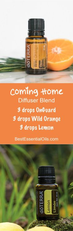 Coming Home doTERRA Diffuser Blend