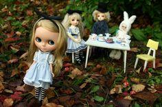 Blythe in Wonderland!!!