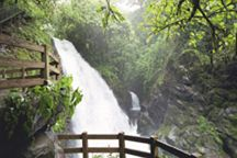 One of my favorite places in the world!!! LaPaz Waterfall Gardens Costa Rica