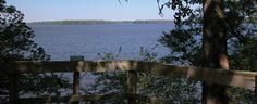 Beautiful view of Lake Talquin - Florida Florida City, Florida State Seminoles, Field Trips, Mississippi, State Parks, Alabama, Wander, Homeschool, National Parks