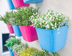 Take it inside! Plant succulents and colorful flowers in planters and hang them from your walls to create an aesthetically pleasing display to brighten up your home décor.