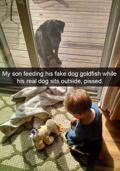 30 Examples of Dogs Being the Funniest Thing on Snapchat - I Can Has Cheezburger? - Funny Cats | Funny Pictures | Funny Cat Memes | GIF | Cat GIFs | Dogs | Animal Captions | LOLcats | Have Fun | Funny Memes
