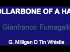 COLLARBONE OF A HARE  G Milligan D tin whistle