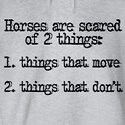 Horse Girl Problems. SOOOOO TRUE!!!!! Especially my American Saddle bred mare. EVERYTHING scares her.