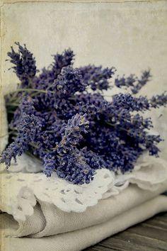 lavender & lace  <3